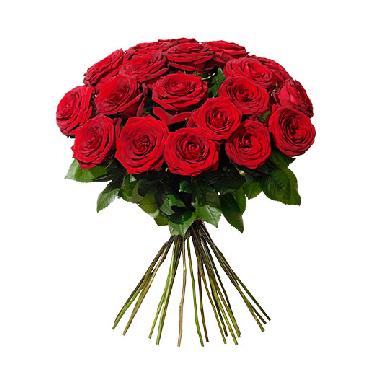 Studentrabatt på 13 % till alla med Studentkortet som handlar hos Interflora.se. Shoppa blommor oh blombud online! Hämta rabatten!